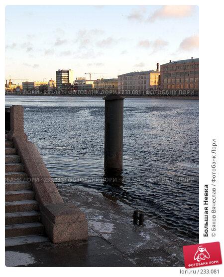 Большая Невка, фото № 233081, снято 26 февраля 2008 г. (c) Бяков Вячеслав / Фотобанк Лори