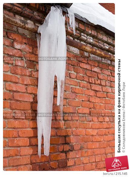 Большая сосулька на фоне кирпичной стены, фото № 215145, снято 23 февраля 2008 г. (c) Солодовникова Елена / Фотобанк Лори