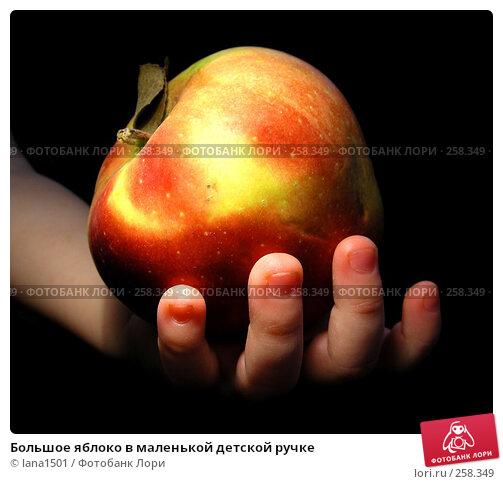 Купить «Большое яблоко в маленькой детской ручке», эксклюзивное фото № 258349, снято 1 апреля 2008 г. (c) lana1501 / Фотобанк Лори