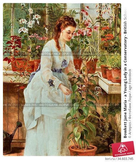 Bowkett Jane Maria - a Young Lady in a Conservatory - British School... Стоковое фото, фотограф Artepics / age Fotostock / Фотобанк Лори