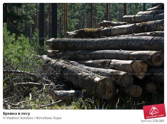 Бревна в лесу, фото № 276981, снято 8 августа 2007 г. (c) Vladimir Kolobov / Фотобанк Лори