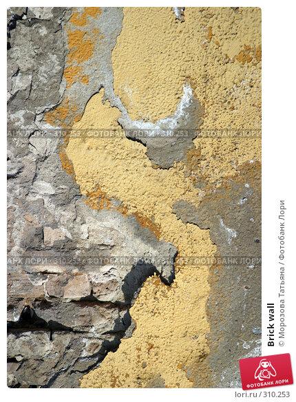 Brick wall, фото № 310253, снято 6 апреля 2005 г. (c) Морозова Татьяна / Фотобанк Лори