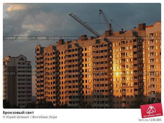 Бронзовый свет, фото № 238885, снято 24 июня 2007 г. (c) Юрий Шпинат / Фотобанк Лори