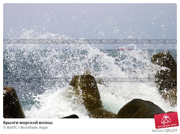 Брызги морской волны, фото № 329277, снято 19 июня 2008 г. (c) RedTC / Фотобанк Лори