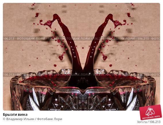 Купить «Брызги вина», фото № 106213, снято 27 октября 2007 г. (c) Владимир Ильин / Фотобанк Лори