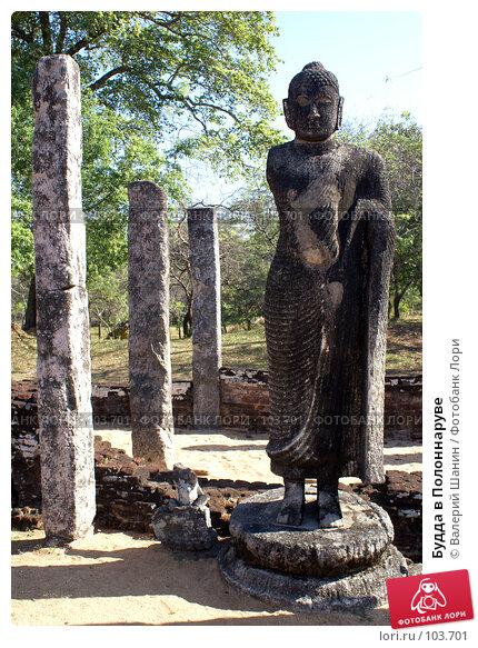 Купить «Будда в Полоннаруве», фото № 103701, снято 22 апреля 2018 г. (c) Валерий Шанин / Фотобанк Лори