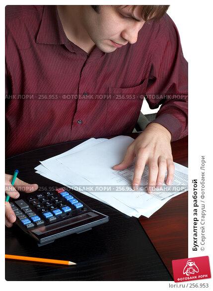 Бухгалтер за работой, фото № 256953, снято 5 ноября 2007 г. (c) Сергей Старуш / Фотобанк Лори