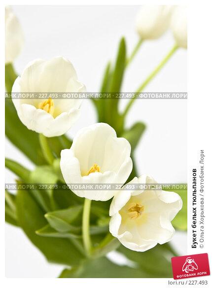 Букет белых тюльпанов, фото № 227493, снято 8 марта 2008 г. (c) Ольга Хорькова / Фотобанк Лори