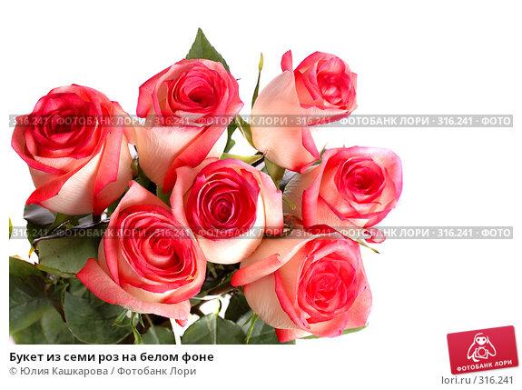 Букет из семи роз на белом фоне, фото № 316241, снято 16 марта 2008 г. (c) Юлия Кашкарова / Фотобанк Лори