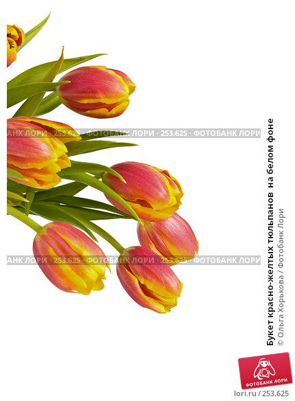 Букет красно-желтых тюльпанов  на белом фоне, фото № 253625, снято 8 марта 2008 г. (c) Ольга Хорькова / Фотобанк Лори