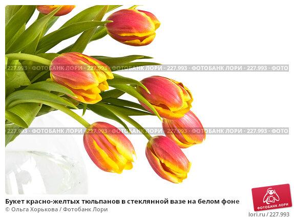 Букет красно-желтых тюльпанов в стеклянной вазе на белом фоне, фото № 227993, снято 8 марта 2008 г. (c) Ольга Хорькова / Фотобанк Лори