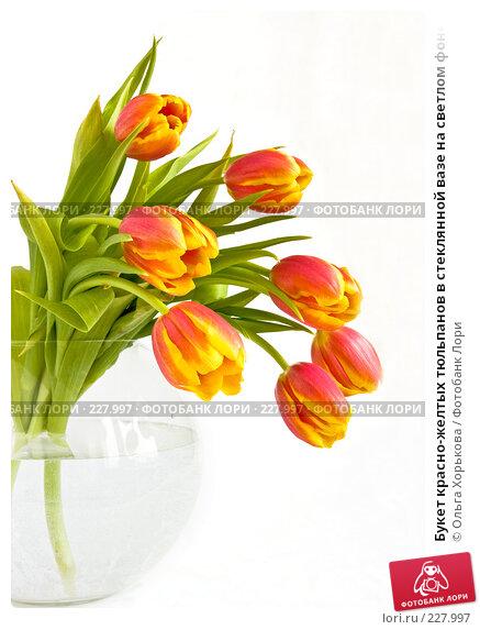 Букет красно-желтых тюльпанов в стеклянной вазе на светлом фоне, фото № 227997, снято 8 марта 2008 г. (c) Ольга Хорькова / Фотобанк Лори