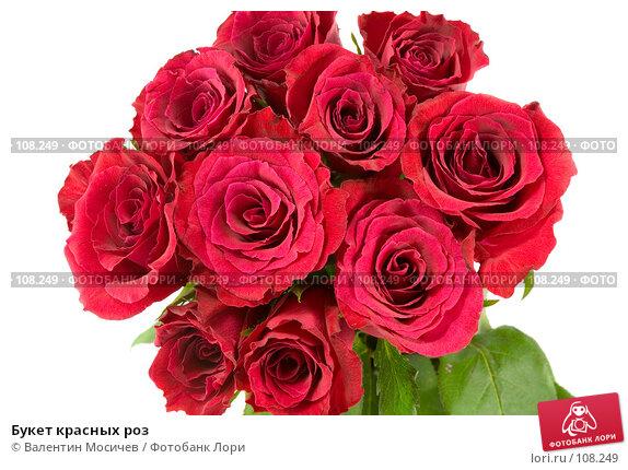 Букет красных роз, фото № 108249, снято 31 марта 2007 г. (c) Валентин Мосичев / Фотобанк Лори