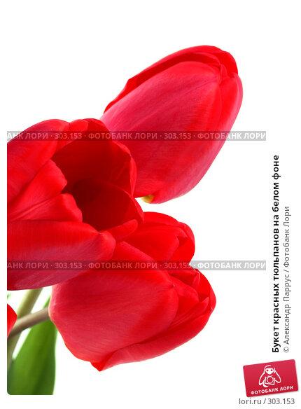 Букет красных тюльпанов на белом фоне, фото № 303153, снято 21 апреля 2008 г. (c) Александр Паррус / Фотобанк Лори