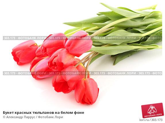 Букет красных тюльпанов на белом фоне, фото № 303173, снято 21 апреля 2008 г. (c) Александр Паррус / Фотобанк Лори