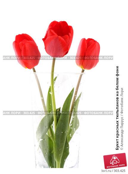 Букет красных тюльпанов на белом фоне, фото № 303425, снято 21 апреля 2008 г. (c) Александр Паррус / Фотобанк Лори