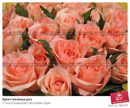 Букет нежных роз, фото № 189417, снято 6 декабря 2007 г. (c) Ольга Хорькова / Фотобанк Лори