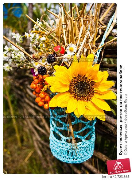 Купить «Букет полевых цветов  на плетеном заборе», фото № 2723365, снято 14 августа 2011 г. (c) Ольга Аристова / Фотобанк Лори