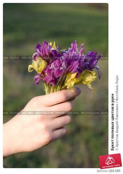 Купить «Букет полевых цветов в руке», фото № 265585, снято 12 апреля 2008 г. (c) Арестов Андрей Павлович / Фотобанк Лори