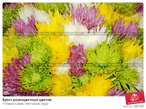 Букет разноцветных цветов, фото № 300549, снято 15 апреля 2008 г. (c) Павел Савин / Фотобанк Лори