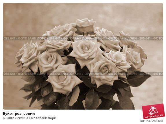 Букет роз, сепия, фото № 285641, снято 28 мая 2017 г. (c) Инга Лексина / Фотобанк Лори