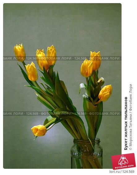 Букет желтых тюльпанов, фото № 124569, снято 19 декабря 2005 г. (c) Морозова Татьяна / Фотобанк Лори