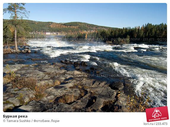 Бурная река, фото № 233473, снято 29 сентября 2007 г. (c) Tamara Sushko / Фотобанк Лори