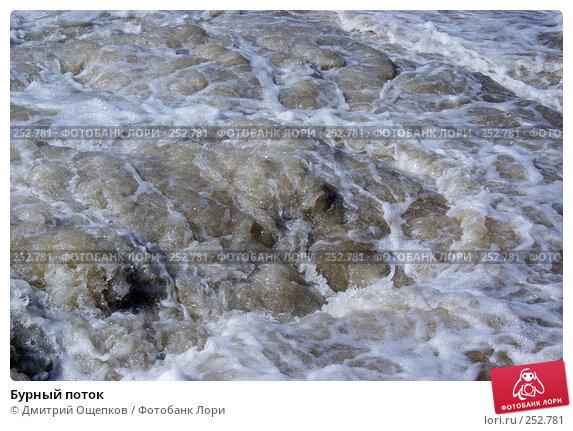 Бурный поток, фото № 252781, снято 21 апреля 2007 г. (c) Дмитрий Ощепков / Фотобанк Лори