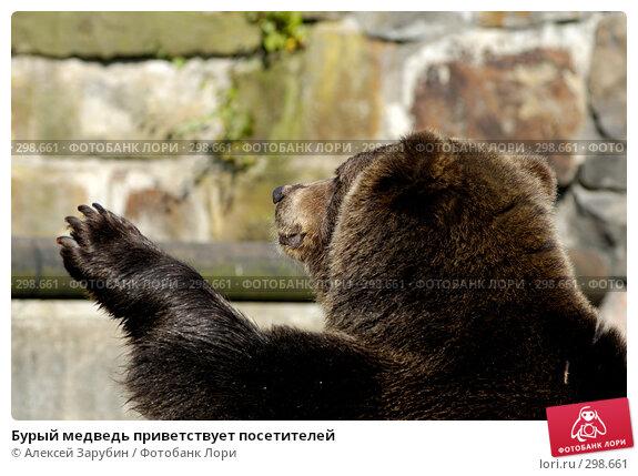 Купить «Бурый медведь приветствует посетителей», фото № 298661, снято 22 сентября 2007 г. (c) Алексей Зарубин / Фотобанк Лори