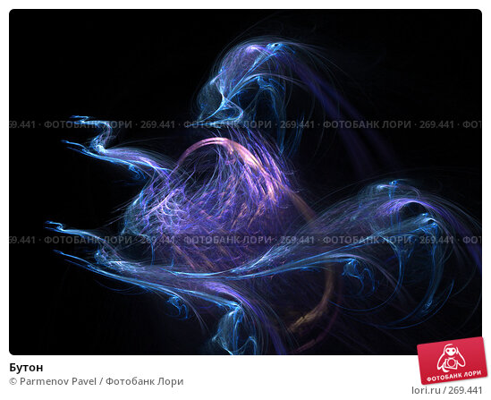 Купить «Бутон», иллюстрация № 269441 (c) Parmenov Pavel / Фотобанк Лори