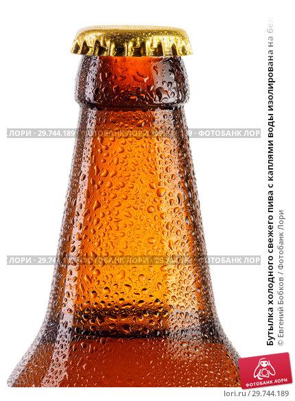 Купить «Бутылка холодного свежего пива с каплями воды изолирована на белом фоне», фото № 29744189, снято 26 февраля 2018 г. (c) Евгений Бобков / Фотобанк Лори