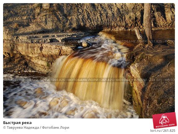 Купить «Быстрая река», фото № 261825, снято 22 апреля 2008 г. (c) Тавруева Надежда / Фотобанк Лори