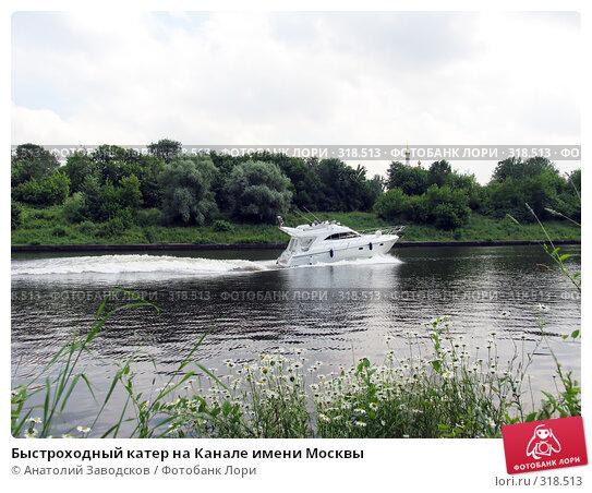 Быстроходный катер на Канале имени Москвы, фото № 318513, снято 14 июля 2004 г. (c) Анатолий Заводсков / Фотобанк Лори