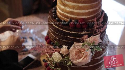 Cake decoration, видеоролик № 25794937, снято 2 марта 2016 г. (c) Алексей Макаров / Фотобанк Лори
