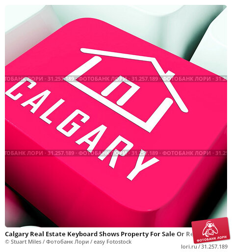 Купить «Calgary Real Estate Keyboard Shows Property For Sale Or Rent In Alberta. Investment Agents Or Brokers Symbol 3d Illustration», фото № 31257189, снято 3 января 2012 г. (c) easy Fotostock / Фотобанк Лори
