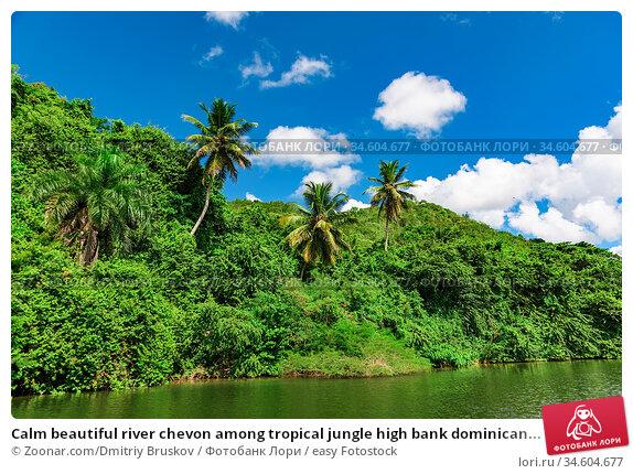 Calm beautiful river chevon among tropical jungle high bank dominican... Стоковое фото, фотограф Zoonar.com/Dmitriy Bruskov / easy Fotostock / Фотобанк Лори
