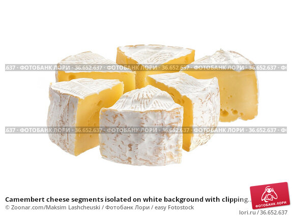 Camembert cheese segments isolated on white background with clipping... Стоковое фото, фотограф Zoonar.com/Maksim Lashcheuski / easy Fotostock / Фотобанк Лори