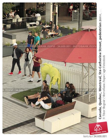 Canada, Quebec, Montreal, Ste-Catherine Street, pedestrian zone, ... Стоковое фото, фотограф Tibor Bognár / age Fotostock / Фотобанк Лори
