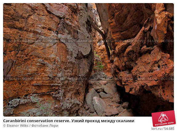 Caranbirini conservation reserve. Узкий проход между скалами, фото № 54685, снято 4 июля 2007 г. (c) Eleanor Wilks / Фотобанк Лори