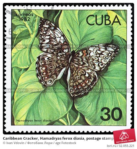 Caribbean Cracker, Hamadryas ferox diasia, postage stamp, Cuba, 1982. (2014 год). Редакционное фото, фотограф Ivan Vdovin / age Fotostock / Фотобанк Лори