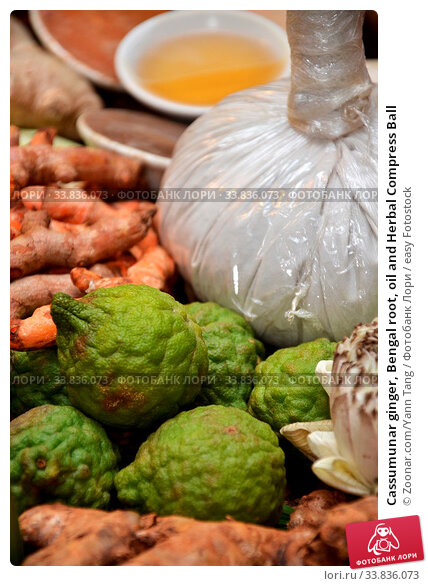 Купить «Cassumunar ginger, Bengal root, oil and Herbal Compress Ball», фото № 33836073, снято 25 мая 2020 г. (c) easy Fotostock / Фотобанк Лори