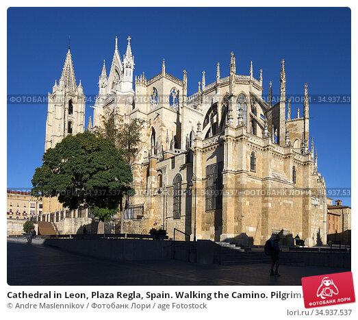 Cathedral in Leon, Plaza Regla, Spain. Walking the Camino. Pilgrimage... Стоковое фото, фотограф Andre Maslennikov / age Fotostock / Фотобанк Лори