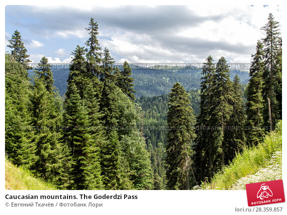Купить «Caucasian mountains. The Goderdzi Pass», фото № 28359857, снято 13 июля 2013 г. (c) Евгений Ткачёв / Фотобанк Лори