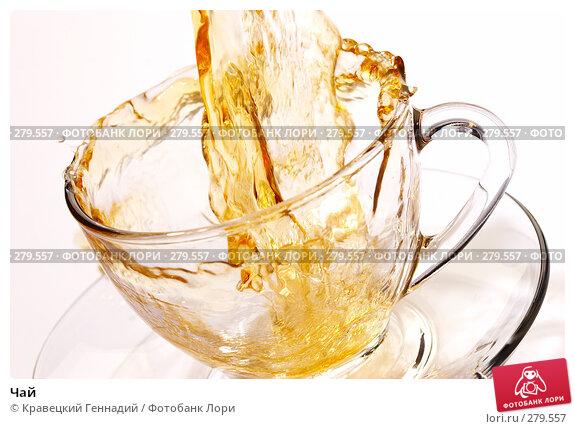 Чай, фото № 279557, снято 8 декабря 2005 г. (c) Кравецкий Геннадий / Фотобанк Лори