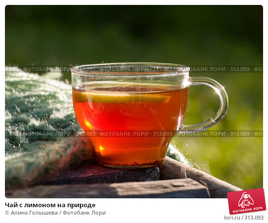 Чай с лимоном на природе, эксклюзивное фото № 313093, снято 5 июня 2008 г. (c) Алина Голышева / Фотобанк Лори