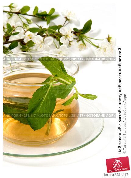 Чай зеленый с мятой с цветущей весенней веткой, фото № 281117, снято 29 апреля 2008 г. (c) Татьяна Белова / Фотобанк Лори