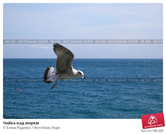 Чайка над морем, фото № 98329, снято 17 сентября 2007 г. (c) Елена Руденко / Фотобанк Лори