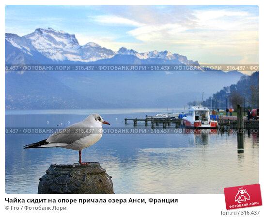 Чайка сидит на опоре причала озера Анси, Франция, фото № 316437, снято 29 января 2008 г. (c) Fro / Фотобанк Лори