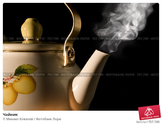 Купить «Чайник», фото № 757749, снято 12 февраля 2009 г. (c) Михаил Ковалев / Фотобанк Лори