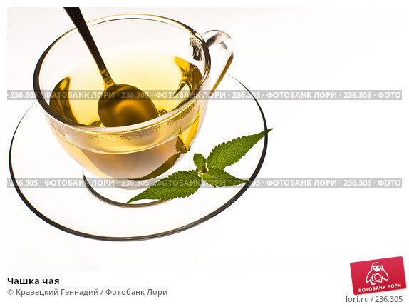 Чашка чая, фото № 236305, снято 1 мая 2017 г. (c) Кравецкий Геннадий / Фотобанк Лори